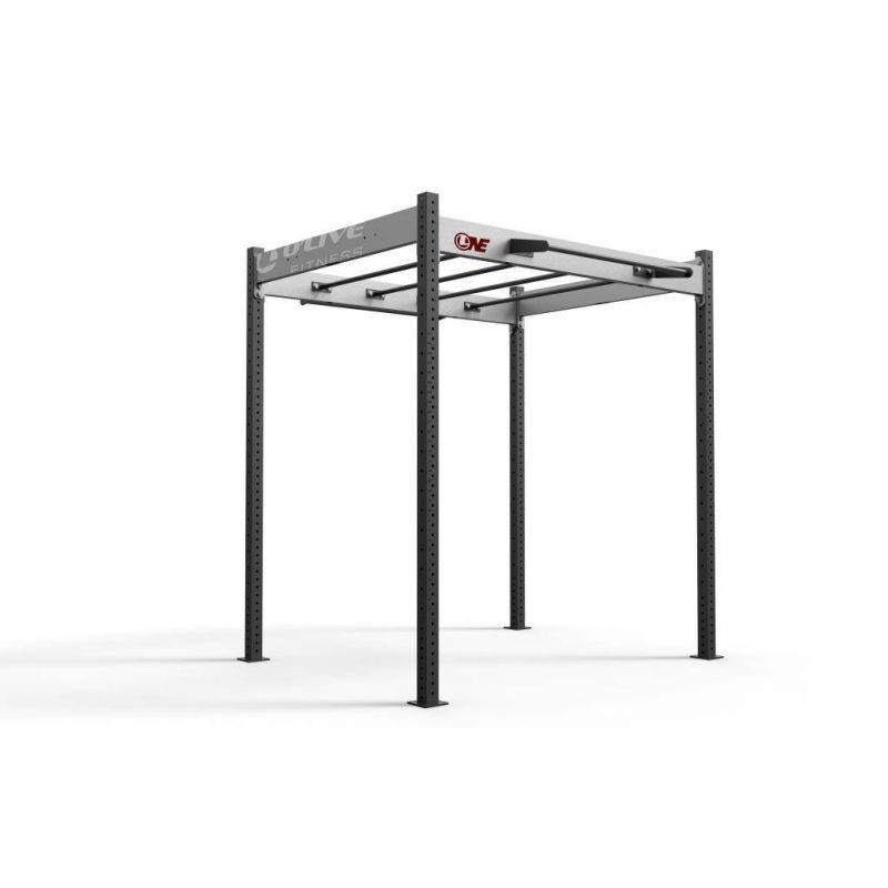 FS 100, Cages functional training