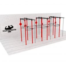 Structure Cross Training Tower CUSTOM GYM T01 BSA cages Cross Training  BSA PRO