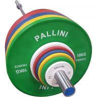 Bumper Cross Training 10 kg PALLINI